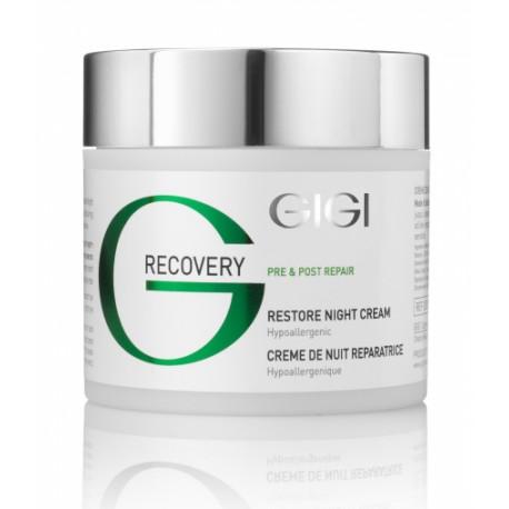Recovery Restore Night Cream GIGI, 250 ml / Ночной восстанавливающий крем ДжиДжи, 250 мл